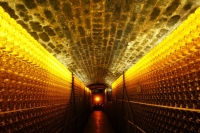 tokaji wine cellar